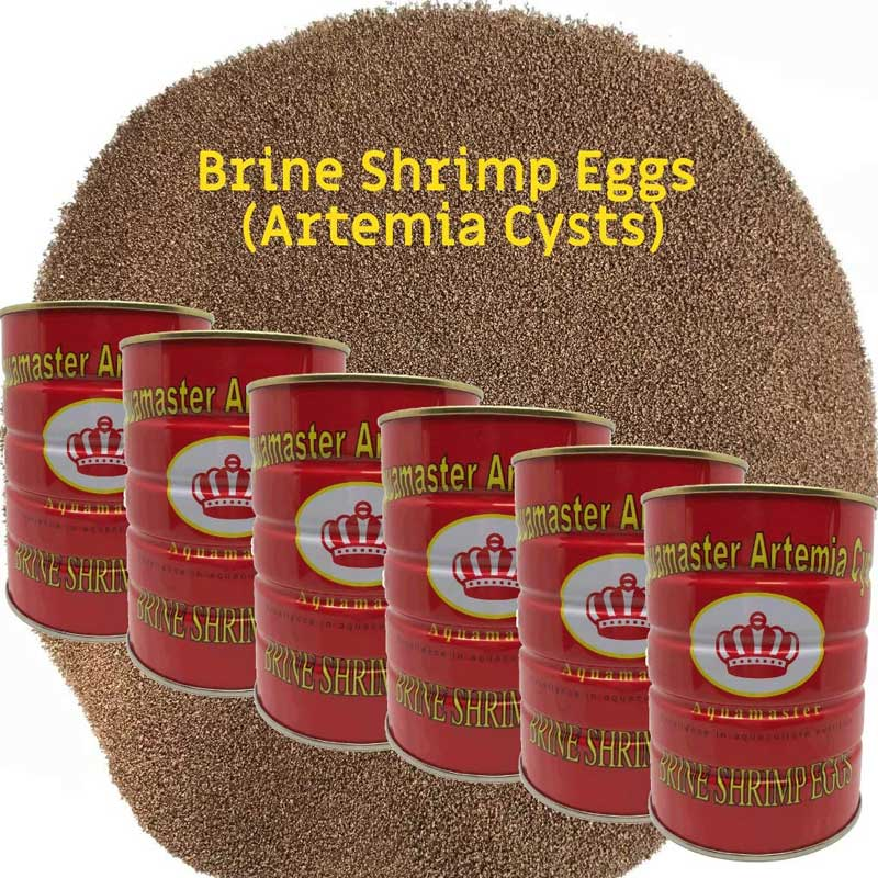 Brine Shrimp Eggs By Pound Ezlis
