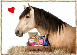 Horse Box Treats and Foods