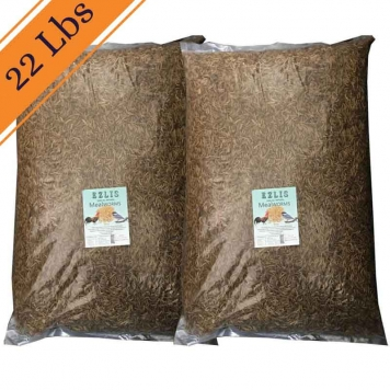 22-LBS-dried-mealworms-Ezlis
