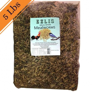 5-LBS-dried-mealworms-Ezlis