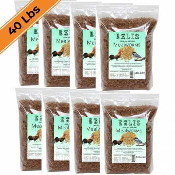 Dried-mealworms-40-lbs-Ezlis